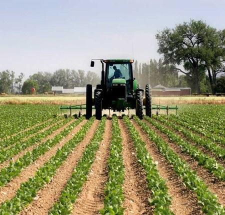 پرداخت بیش از ۹/۸هزار میلیارد ریال تسهیلات ایجاد اشتغال روستایی