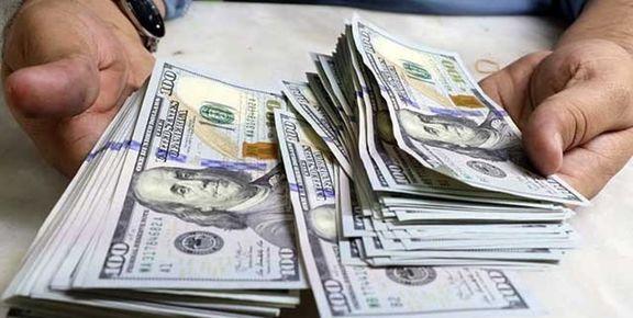 بانک مرکزی سال۹۶ بیش از ۴۱میلیارد دلار ارز فروخت/۴۱.۷درصد از کل فروش به یورو اختصاص یافت
