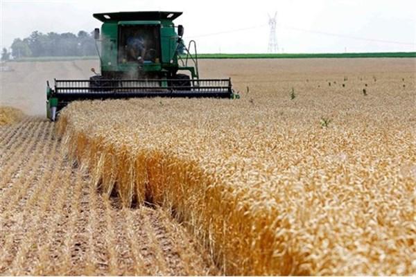 بورس کالا، راه حذف دلالان از بازار محصولات کشاورزی/ تعاونیهای روستایی مانع استفاده کشاورزان از مزایای بازار سرمایه