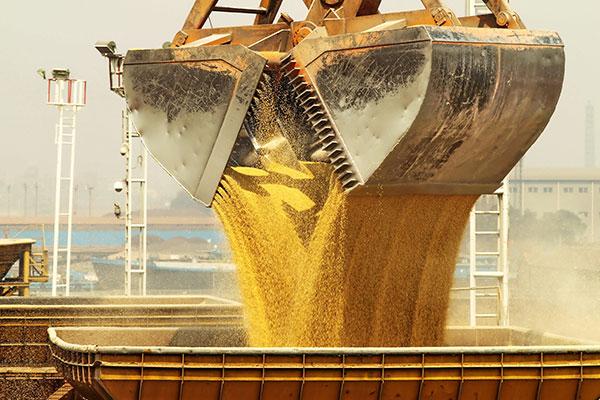 چین خرید محصولات کشاورزی از امریکا را از سر گرفت