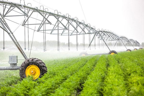 صدور مجوز صندوق کالایی کشاورزی تسهیل میشود