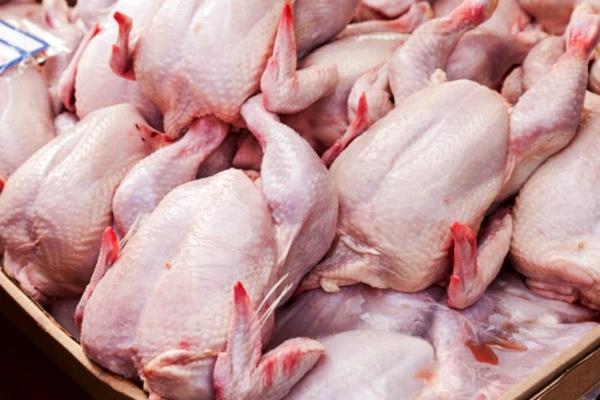صعود قیمت مرغ در بین کالاهای اساسی