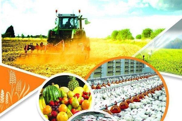 چین بر محصولات کشاورزی امریکا تعرفه بست