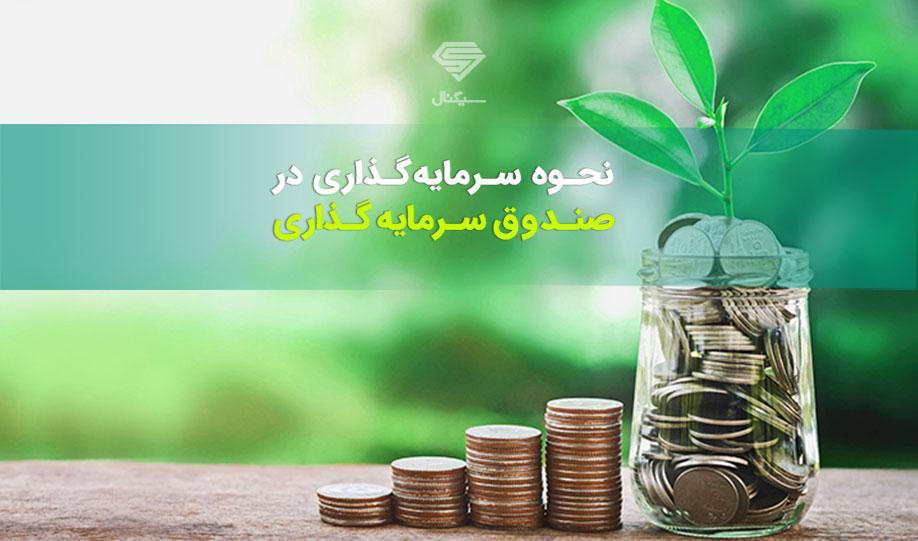 نحوه سرمایه گذاری در صندوق های سرمایه گذاری | راهنمای خرید صندوق سرمایه گذاری