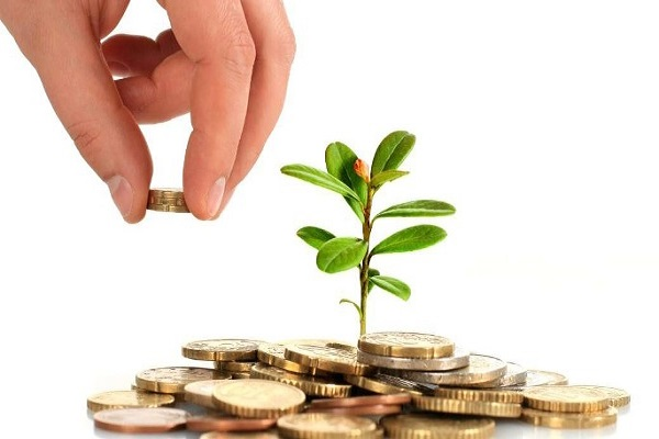 """سود هر سهم """"پردیس"""" ۴۵۹ درصد افزایش یافت"""