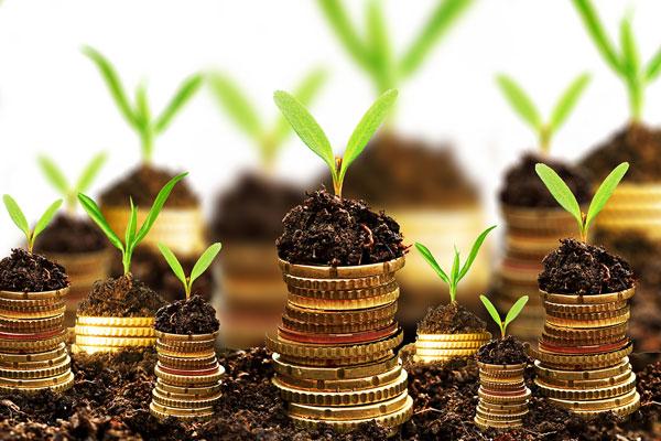 مدیریت ریسک با متنوعسازی سبد سرمایهگذاری