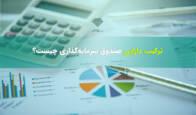 منظور از پورتفوی یا ترکیب دارایی های صندوق های سرمایه گذاری چیست؟