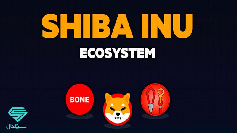 بررسی توکن leash و bone در اکوسیستم شیبا تحلیل تکنیکال ارز دیجیتال شیبا اینو (SHIB)